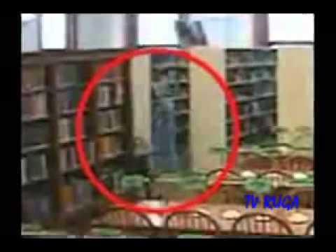 Aparições em Imagens e videos Atormentador (BY TV RUGA)