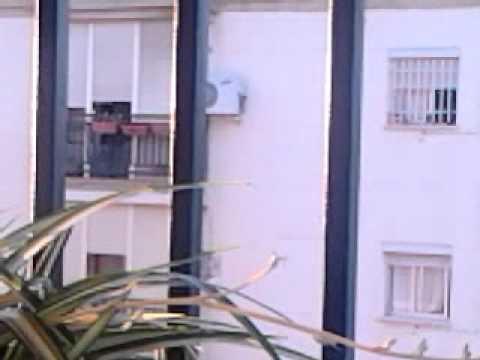 La Arba De Al Laooo video