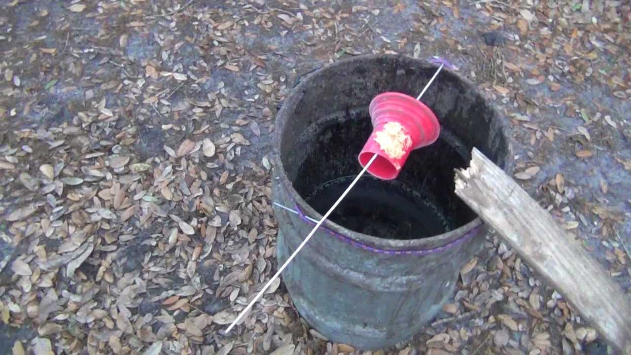 Testing Rat In A Barrel Trap Youtube