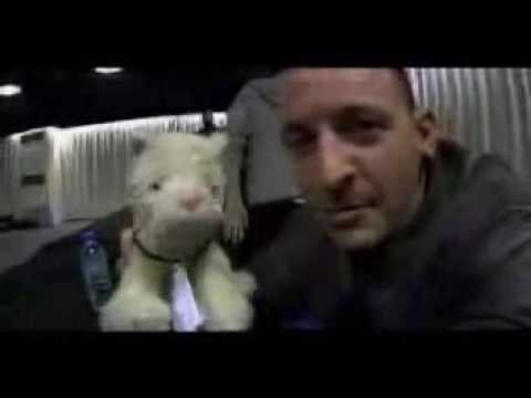 Linkin Park - Chester Bennington Music Videos