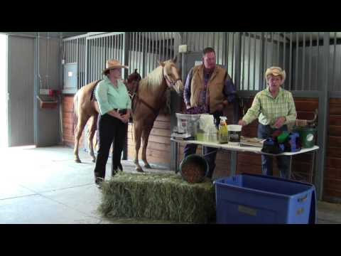 Equine 72-Hour Preparedness Video With Elbert County Emergency Management
