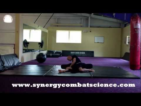 Synergy Martial Arts Grappling SPP 5-2-12 Image 1