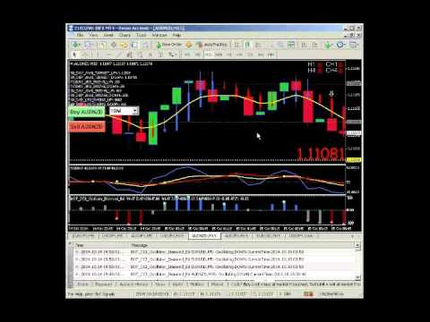 Binary option traders in india