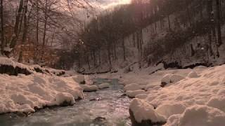 Nice Sunny Day of a Mild Winter with Relaxing Gentle Sounds of Snow Falling Near the Soothing River