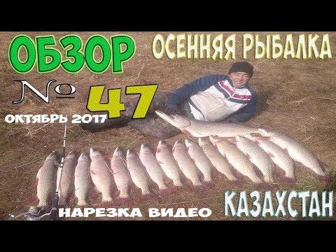 ловля в казахстане