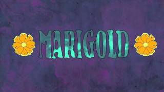 Marigold • LAST DAYS OF DISCO (Live projection video)