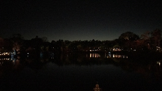 Rivers of Light Nighttime Spectacular - Public Premiere Performance - Animal Kingdom