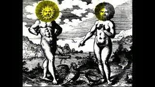The Alchemical Dream:Rebirth of the Great Work {Terence McKenna film}