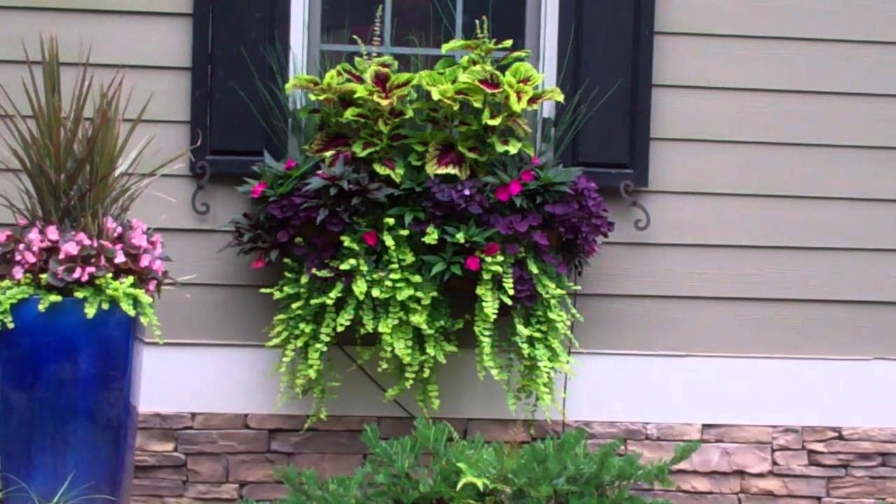 Youtube Hanging Flower Baskets : Beautiful window boxes and hanging baskets min