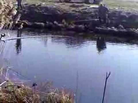 ловля карася в тургиново тверская область