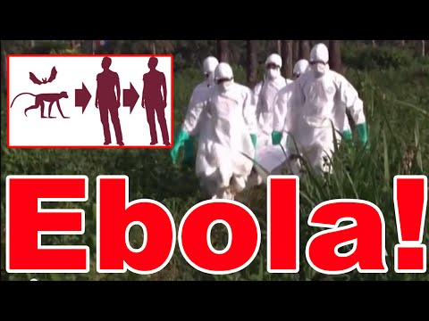 Ebola Virus in West Africa - Outbreak 2014 : 725 Deaths