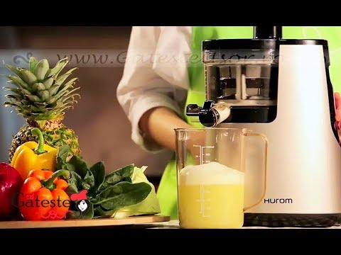 Storcator de Fructe si Legume Hurom Slow Juicer HH Elite DBE11