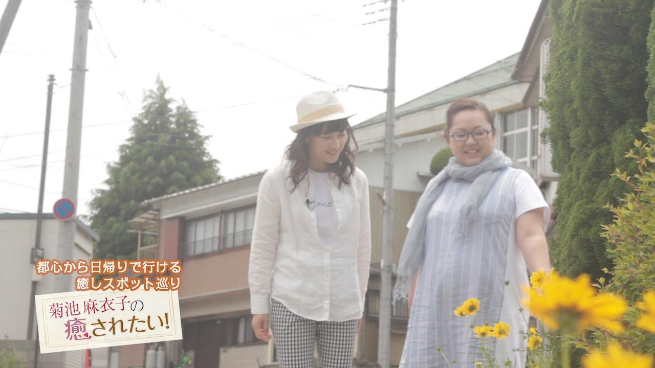 菊池麻衣子の画像 p1_12