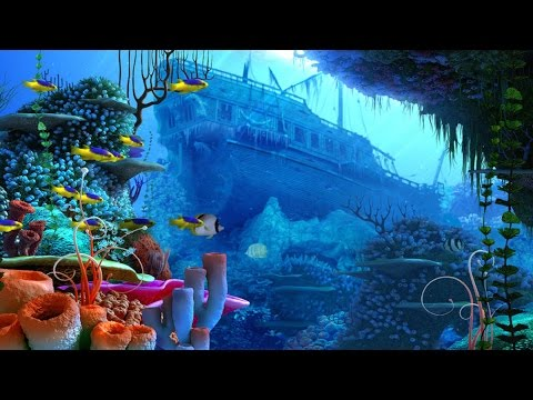 Tropical Ocean Music - Coral Reef
