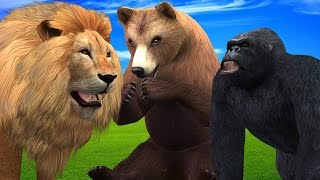 Animals Finger Family | Nursery Rhymes For Childrens | Colors Animals Finger Family Songs