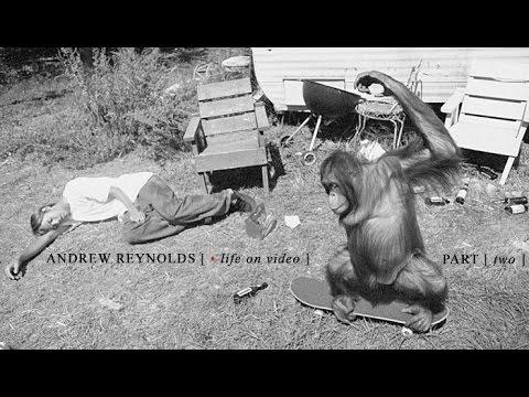 Reynolds | Life On Video: Episode 2