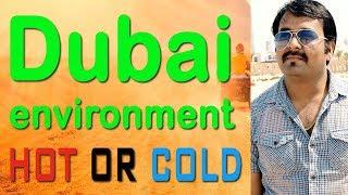 दुबई का पर्यावरण/वातावरण | Dubai Environment HOT or COLD | HINDI URDU | TECH GURU DUBAI | DUBAI JOB
