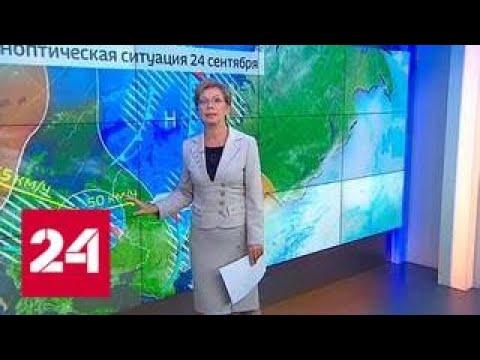 """""""Погода 24"""": обложные дожди и похолодание в Центральной России - Россия 24"""