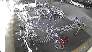 Professional Bike Thief