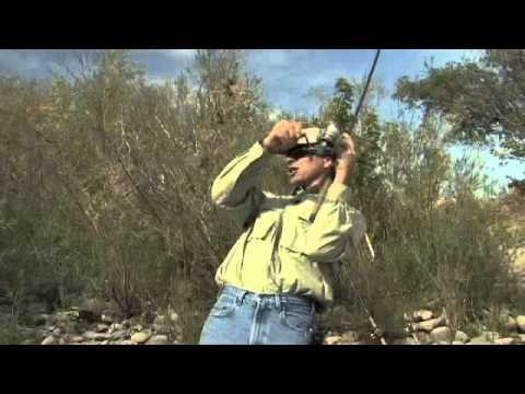 Bobber 'n Jig Steelhead Fishing on the Clearwater River