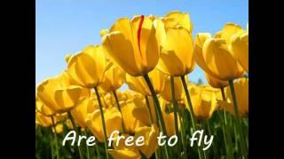 Watch Sheryl Crow Wildflower video