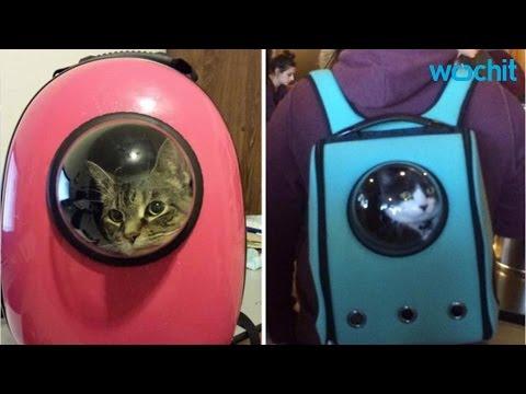 オシャレで宇宙飛行士的な猫や犬のキャリーケース。ナニコレカワイイ♪