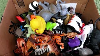 Box of Toys 🐅Wild Zoo Animals 🐘Learning Animal Names Wildlife Sounds for Children