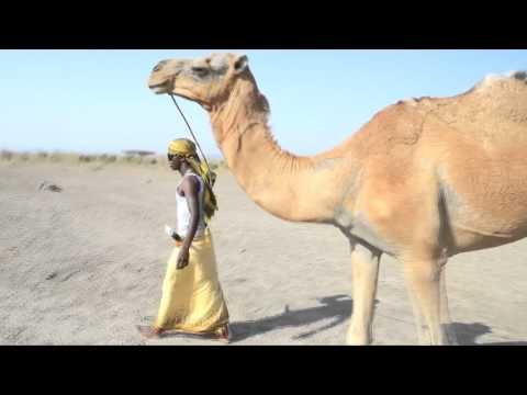 Ethiopian afar music endiras sora ያየሸ የለም.HD