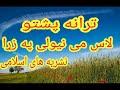 پشتو ترانى ( لاس می نیولی په زړا ) Pashto tarana