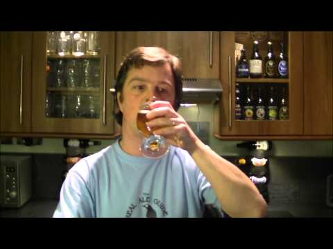 Southern Tier Hop Sun | Southern Tier Brewing Company | American Craft Beer Review