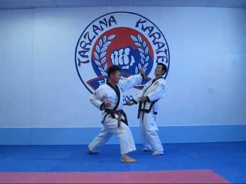 TangSooDo self defense #1 Image 1