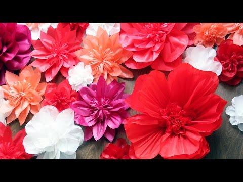 DIY: Бумажные цветы своими руками How to make giant paper flowers tutorial
