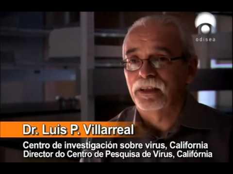 2 5 Virus, el origen
