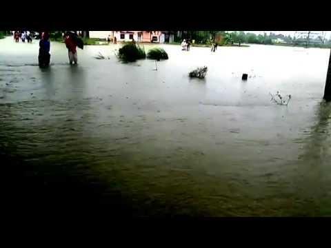 Flood 2015 Manickpur, Belmuri, Dhaniakhali,Hooghly07