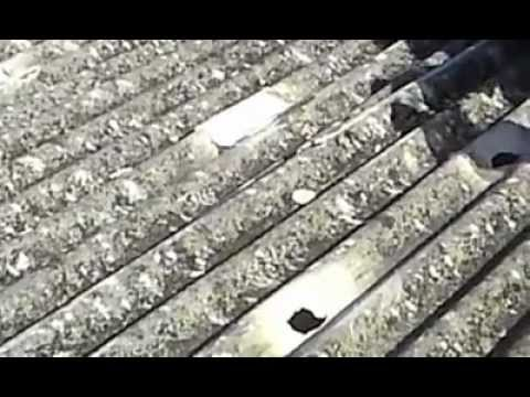 Como colar telha de amianto