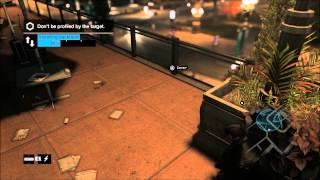 [Watch_Dogs] These wings were made to fly