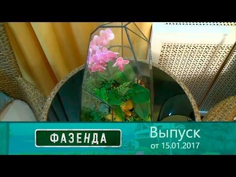 Фазенда - Колониальная спальня.  Выпуск от15.01.2017