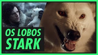 Os lobos Stark e seus donos | GAME OF THRONES