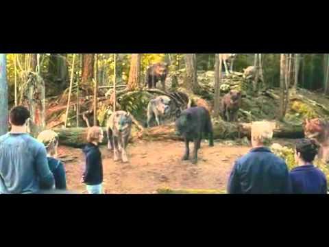 Eclipse - Scene - (Vampire and shape-shifter) -Training