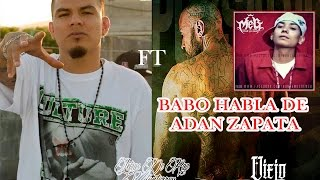THUG POL FT CARTEL DE SANTA // BABO HABLA DE ADAN ZAPATA