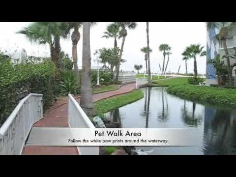 TradeWinds Island Grand Resort - a pet-friendly beach resort