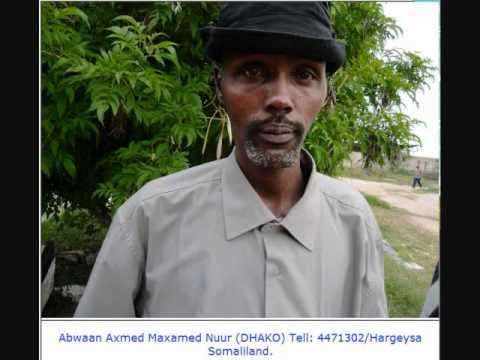 Abwaanka weyn ee Dhako ayaa gabaygiisa sedexaad ee Gobaad uga dhiidhiyay xaalufinta ay Dhiigshiil ka wado gayiga Somaliland.