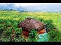 Munnar kerala tourism video ( aerial view )
