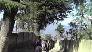Kufri Hill Station Shimla