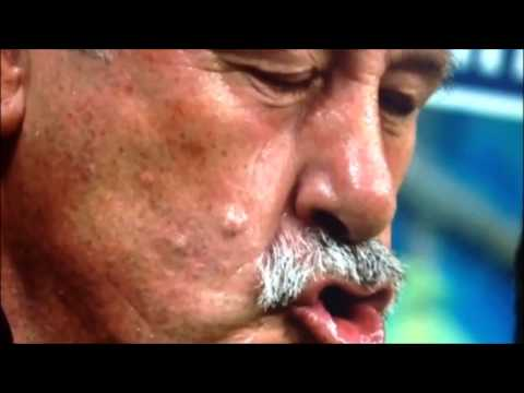 Vincente del Bosque - Constipated 2014