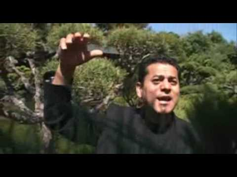 Massoud Wafa - Hum Yaar Hain Tumhare - Bollywood Song- Afghan...