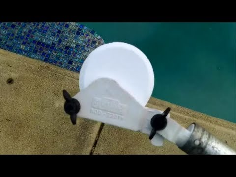 Removing Algae From A Swimming Pool How To Vacuum A Swimming Pool How To Save Money And Do