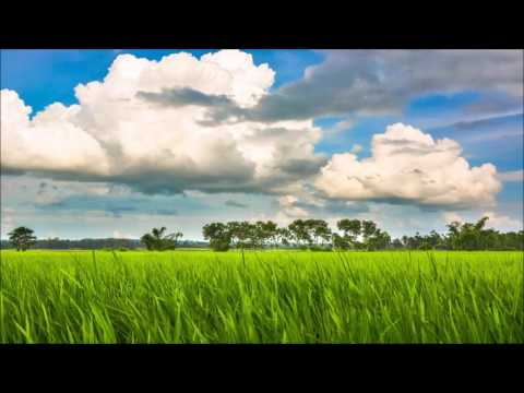 Bengali Folk Song   Swapna Chakraborty  বাংলা পল্লীগীতি   স্বপ্না চক্রবর্তী।
