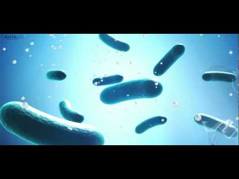ANTABIO - Drug discovery, antibiotic-resistance, bacterial infections