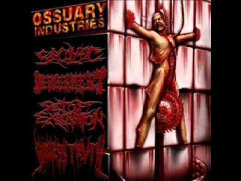 Miserys Omen - Celestial Trinity